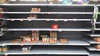 Hurricane Irma hit somewhere in Hillsborough County Florida