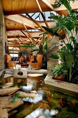 Contoh Taman Dalam Rumah Minimalis Dengan Kolam Ikan Mini