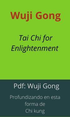 pdf profundizando en wuji gong