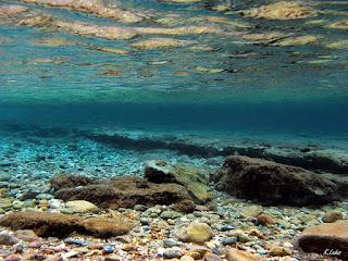 Στον βυθό της υδάτινης αγκαλιάς