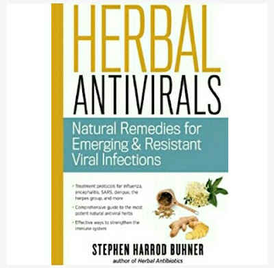 Stephen Harrod Buhner - Building Your Immunity and Protecting Yourself with Herbal Antivirals