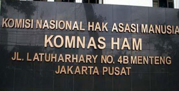 Komisi Nasional Hak Asasi Manusia (Komnas HAM)