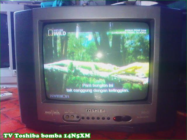 Gambar dan Bentuk Televisi Toshiba Bomba 14-Inch 14N5XM