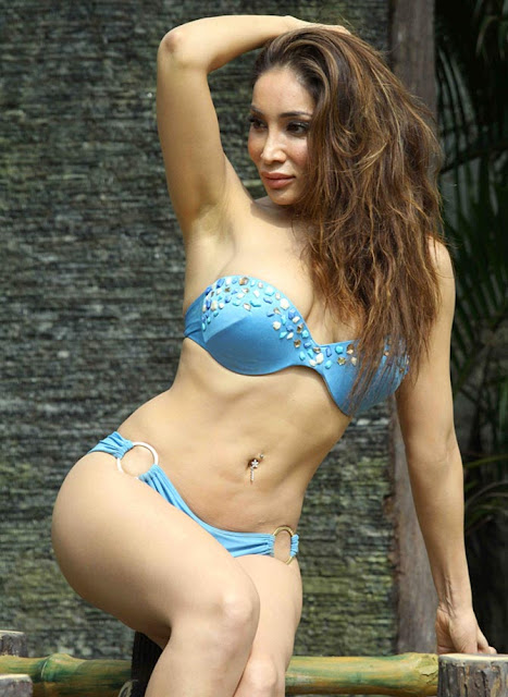 sofia hayat hot holi pics in bikni