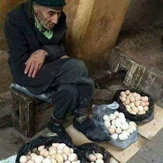 بائع البيض - ان تنصروا الله ينصركم ويثبت اقدامكم