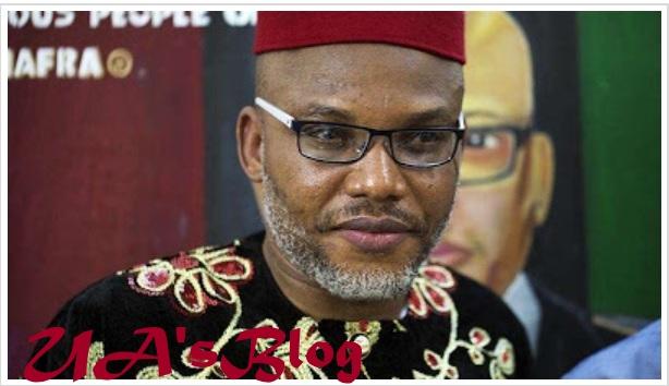 Biafra: Drama As IPOB Sacks Kanu Over Honouring His Dog Above Martyres