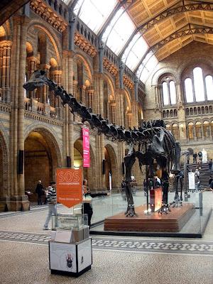 Reino Unido. Gran Bretaña. United Kingdom. Great Britain. Royaume-Uni. Grande-Bretagne. Inglaterra. England. Angleterre. Londres. London. Natural History Museum