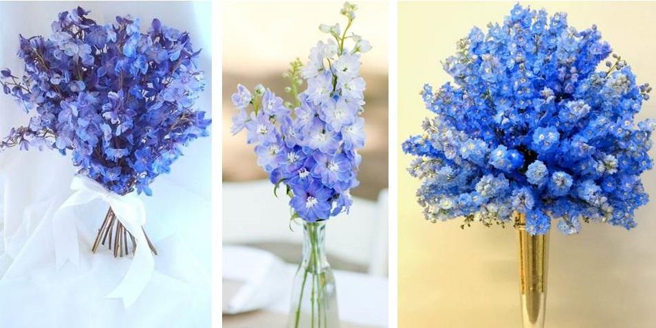 Monochromatic Delphinium Flower Arrangements