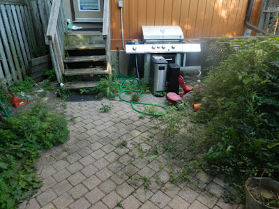 Toronto Playter Estates late summer garden cleanup before by Paul Jung Gardening Services