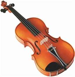 V Is For Violin Skating Buffalo...