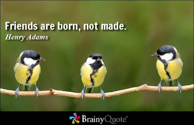 Quotes about friends:friends are born, not made.