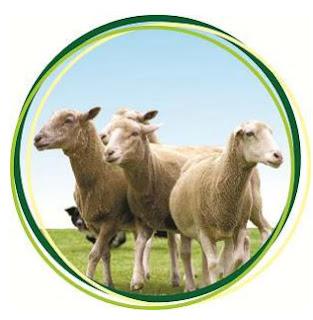 ΔΕΛΤΙΟ ΤΥΠΟΥ - ΗΜΕΡΙΔΑ ΜΕ ΘΕΜΑ: «Εφαρμοσμένη διατροφή και διαχείριση αιγο-προβατοτροφικών εκμεταλλεύσεων» ΚΑΤΕΡΙΝΗ, 30-11-2017