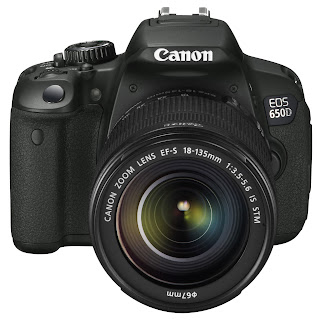 Canon eos rebel t4i/650d for dummies cheat sheet dummies.