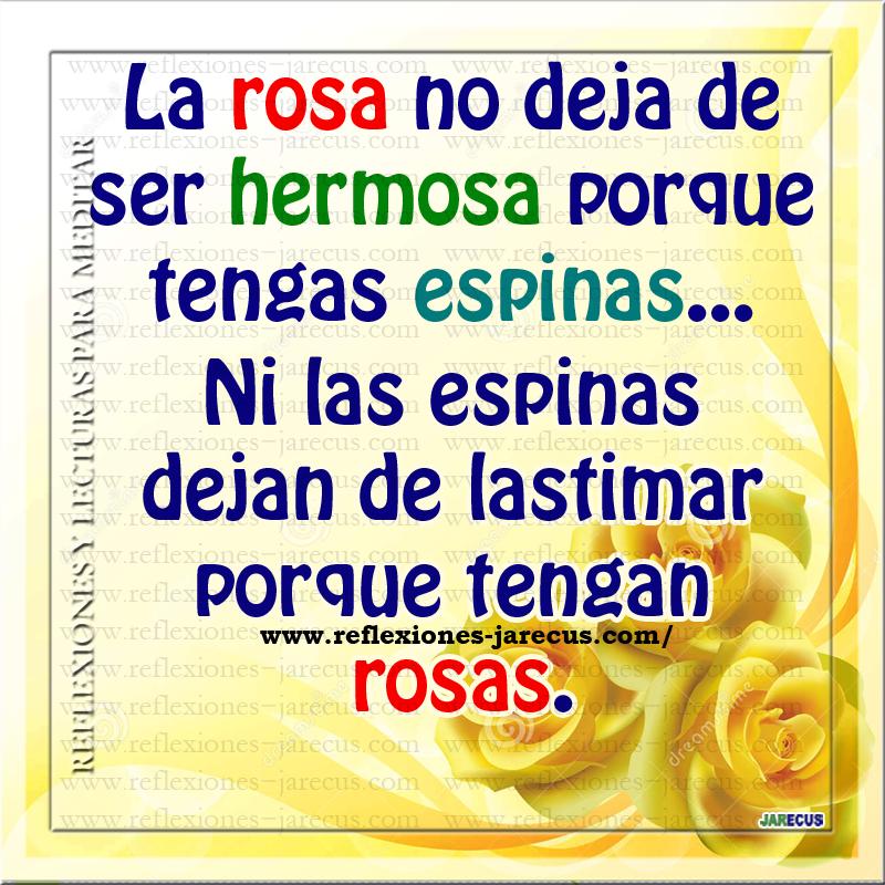 La rosa no deja de ser hermosa porque tengas espinas.. Ni las espinas dejan de lastimar porque tengas rosas