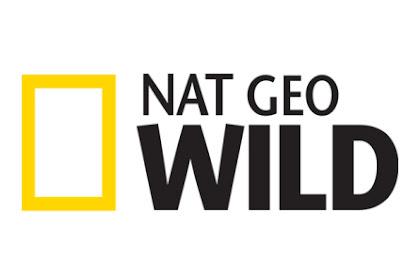 NatGeo Wild Germany / Sky Cinema Hits Germany - Astra Frequency
