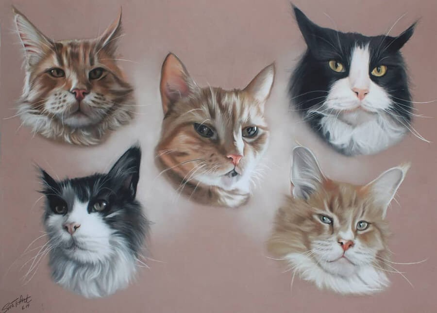 02-Cats-10-Svea-T-Animal-Portrait-Drawings-and-an-Eye-www-designstack-co