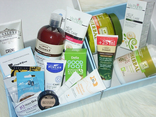 Winter Spa, ShinyBox