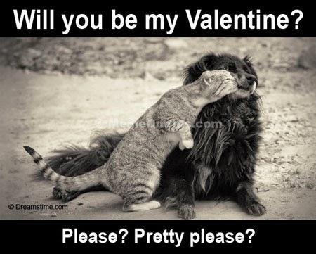 meme foto valentine