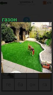 Около дома раскинут газон, на котором гуляет собака с игрушкой в пасти