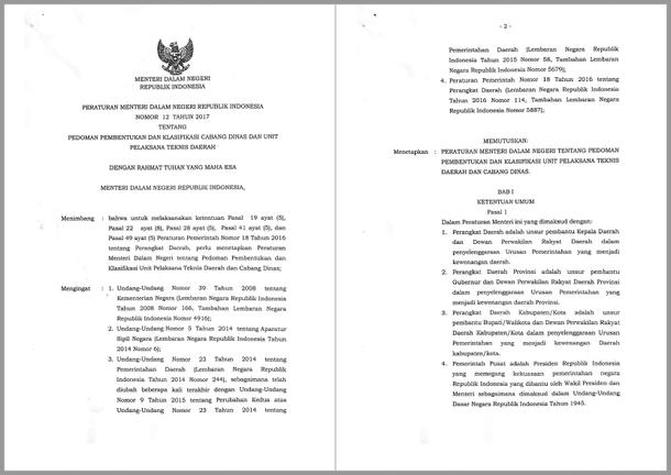 Permendagri Nomor 12 Tahun 2017 Tentang Pedoman Pembentukan dan Klasifikasi Cabang Dinas dan Unit Pelaksana Teknis Daerah
