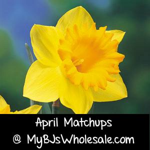 BJs Coupon Matchups for April 2014