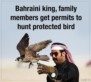Moonis Elahi Condemns Issuing Hunting License To Bahraini King's Family