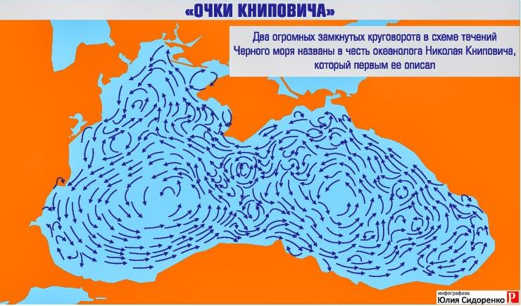 Очки Книповича: два круговорота течений в Черном море