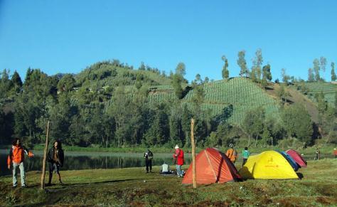 merupakan padang savana yang banyak di huni satwa liar dan menjadi salah satu  7 Spot Menarik Taman Nasional Baluran Yang harus Kamu Tahu