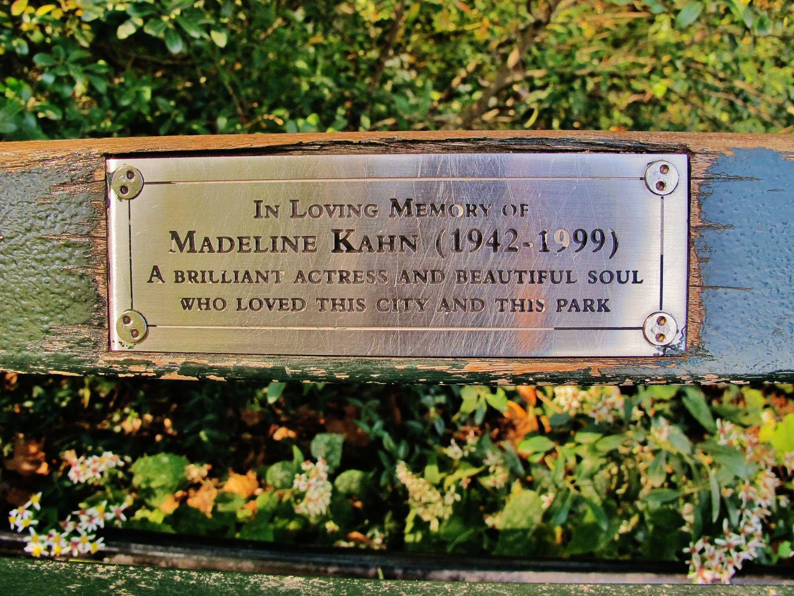 Madeline Kahn Bench Central Park A Paper Moon Sailing Over The