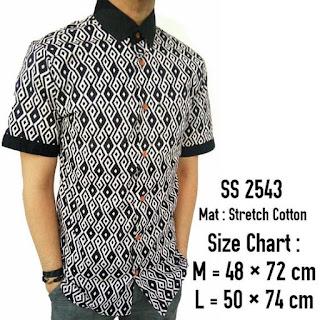 Model Baju Batik Kombinasi Polos Untuk Pria