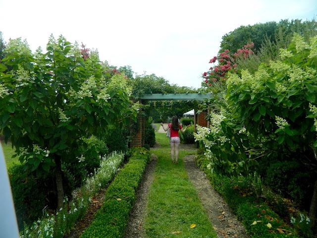 garden-scene