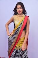 Naziya Khan Model in Saree At Kala Silk Handloom Expo Dec 2017~  Exclusive Galleries 007.jpg