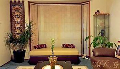 Indoor Plants in a Typical Living Room Setting showing Dragon tree and an Umbrella tree.