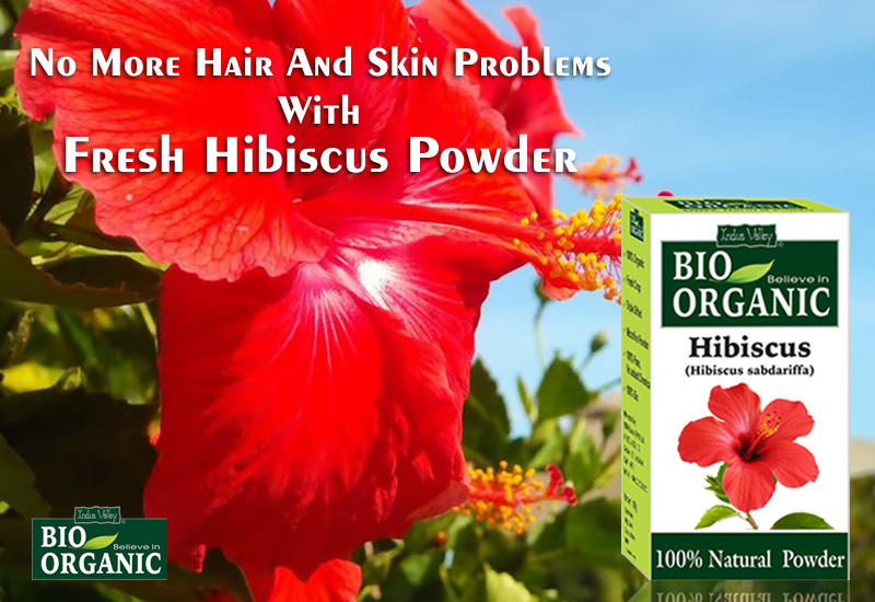 Benefits Of Hibiscus Powder For Skin Ayurvedic Herb