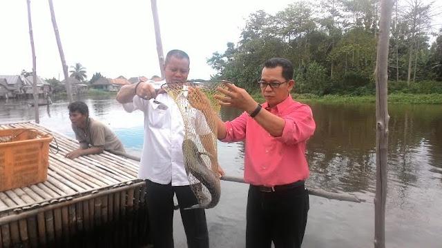 Bantu Pembudidaya Ikan, BP4K OKI Kembangkan Pakan Mandiri