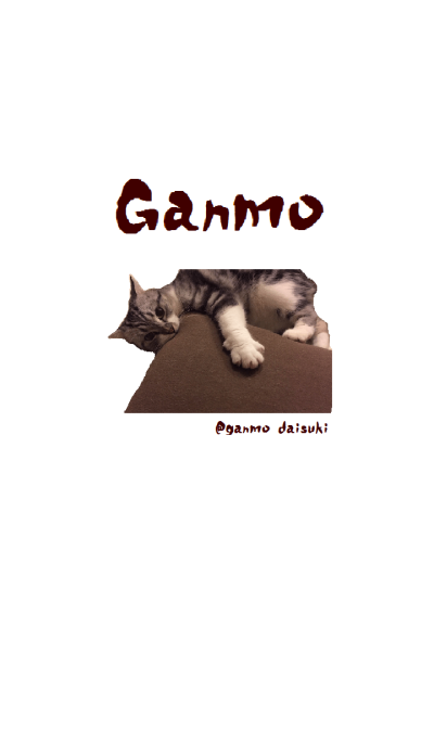 ganmo cushion