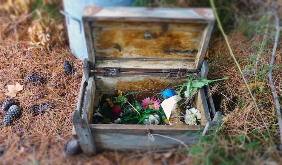 Le jardin secret de marseille voir for Cabanon jardin plastique