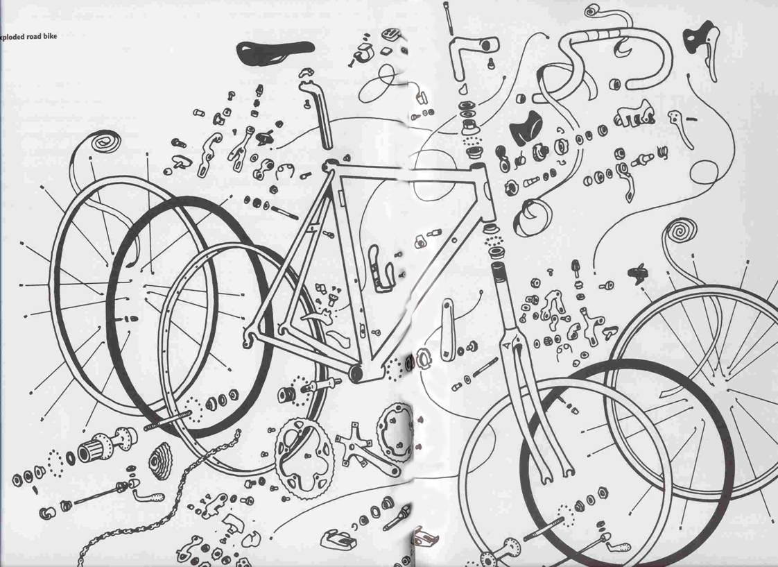 bike parts diagram large intestine anatomy labeled the broken spoke port townsend 39s premier bicycle shop