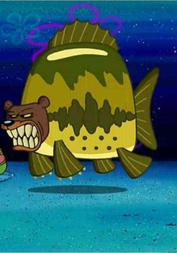 Newzoo Water Bears Is Real