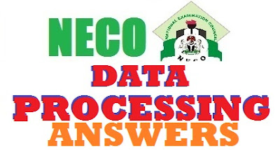 NECO 2017 Data Processing Practicals Questions & Answers | Complete Expo