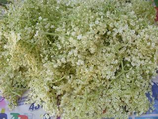 soc, flori de soc, retete cu soc, preparate cu soc, bauturi din soc, soc pentru socata, flori de soc pentru socata, retete culinare, preparate culinare, soc pentru ceai, ceai din flori de soc,