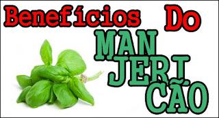Para que serve Manjericão