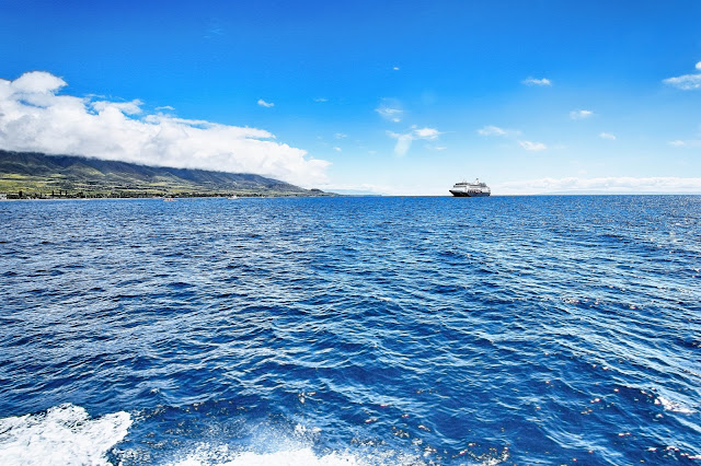 view from the Expeditions Ferry of Maui and a cruise ship