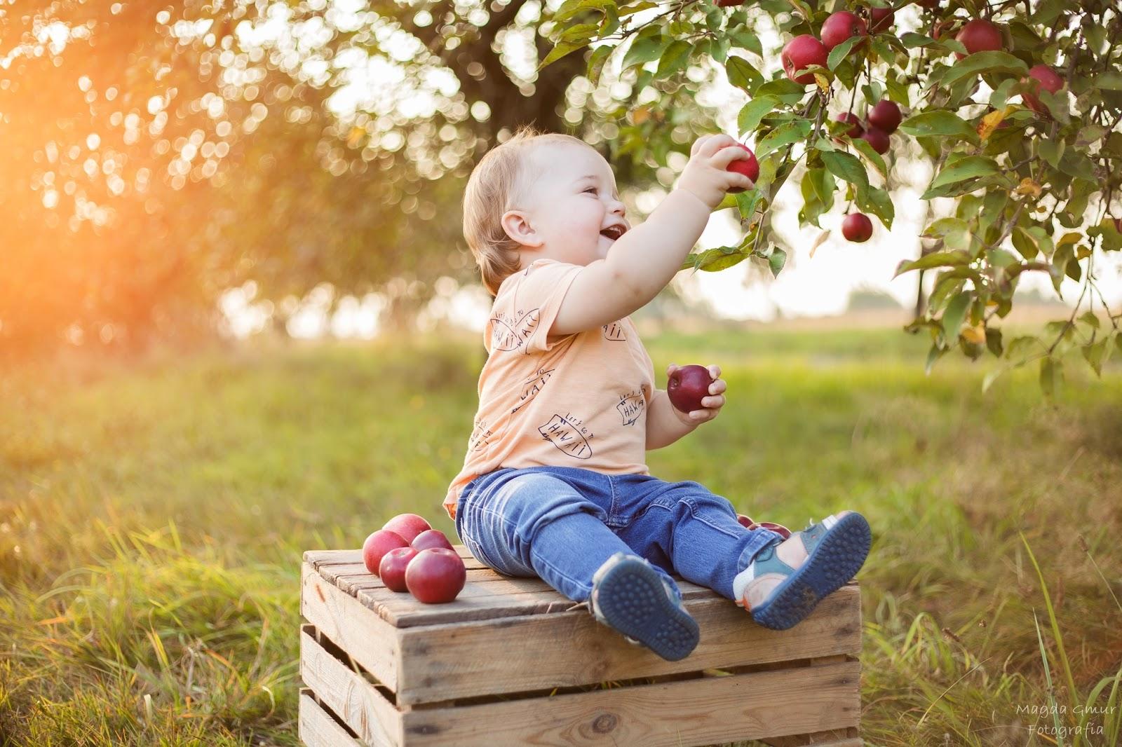sesja w sadzie, sesja dziecięca opoczno, fotograf opoczno, magda gmur foto