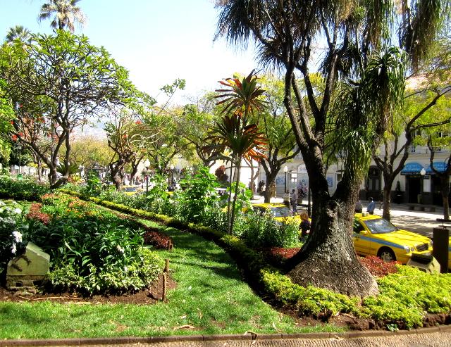 Jardim Municipal Funchal center Madeira