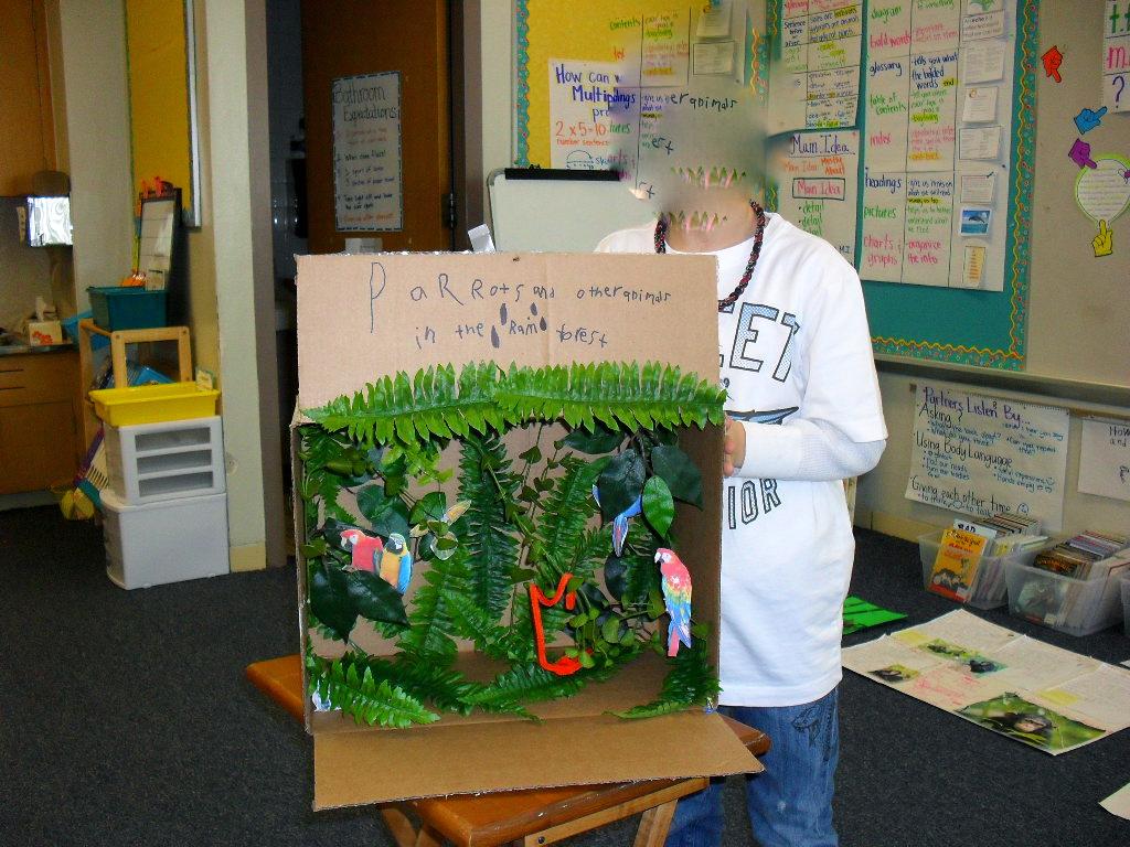 Tropical Project Rainforest Diorama