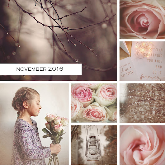 A month in photos {November 2016}