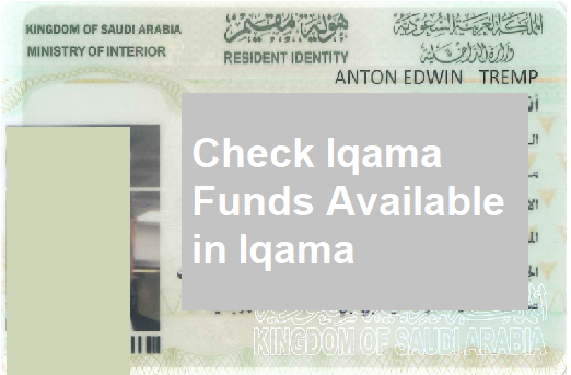 Kingdom Of Saudi Arabia Ministry Of Interior Iqama Check