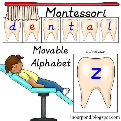 FREE Montesorri-Inspired Teeth-Themed Movable Alphabet from In Our Pond