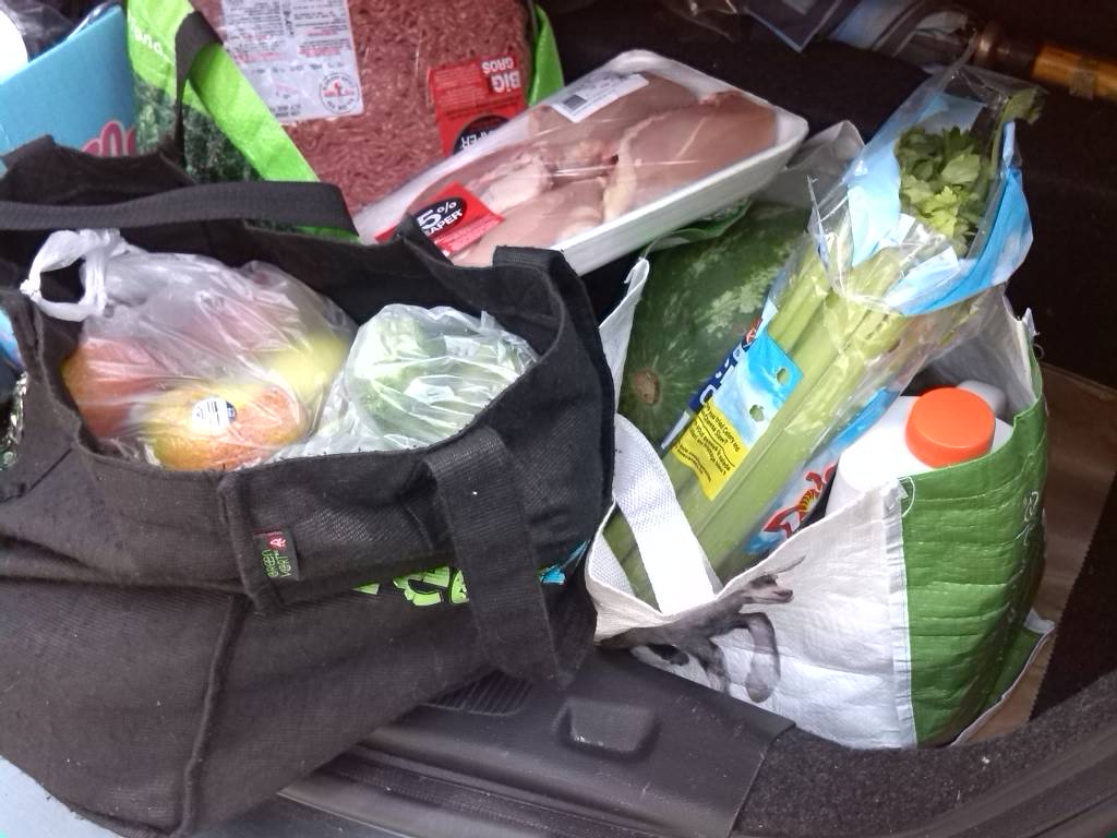 How Long Can You Keep Frozen Food In The Car